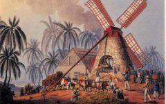 Brasil Colônia: Pré – Descoberta do Brasil até o Ciclo da Cana de Açúcar