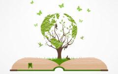 Ecologia Enem Resumo